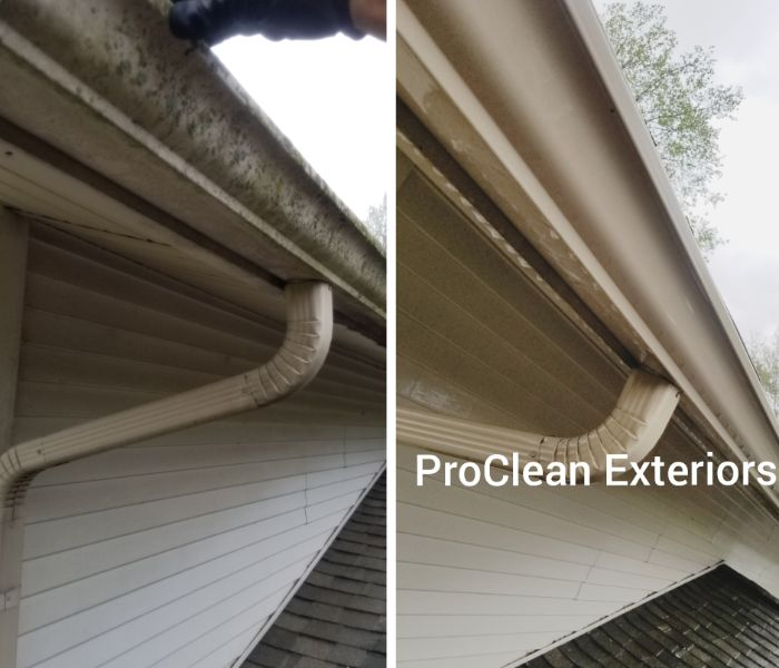 expert gutter whitening and debris removal cleaning
